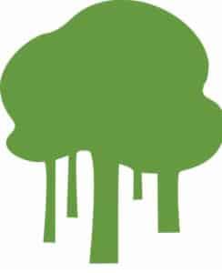 https://www.rainforestcoalition.org/