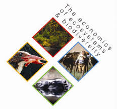 Economics of Ecosystems & Biodiversity