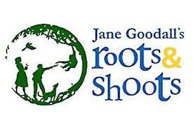 Roots & Shoots