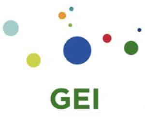 http://www.globalelectricityinitiative.com/