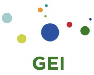 Global Electricity Initiative