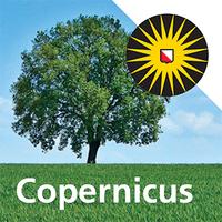 Copernicus Institute of Sustainable Development