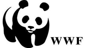 World Wildlife Federation