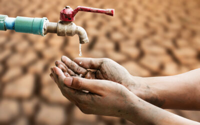 Water Scarcity: A Quick Look at Leading Organizations